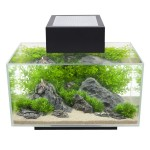 Fluval Edge Aquarium Black